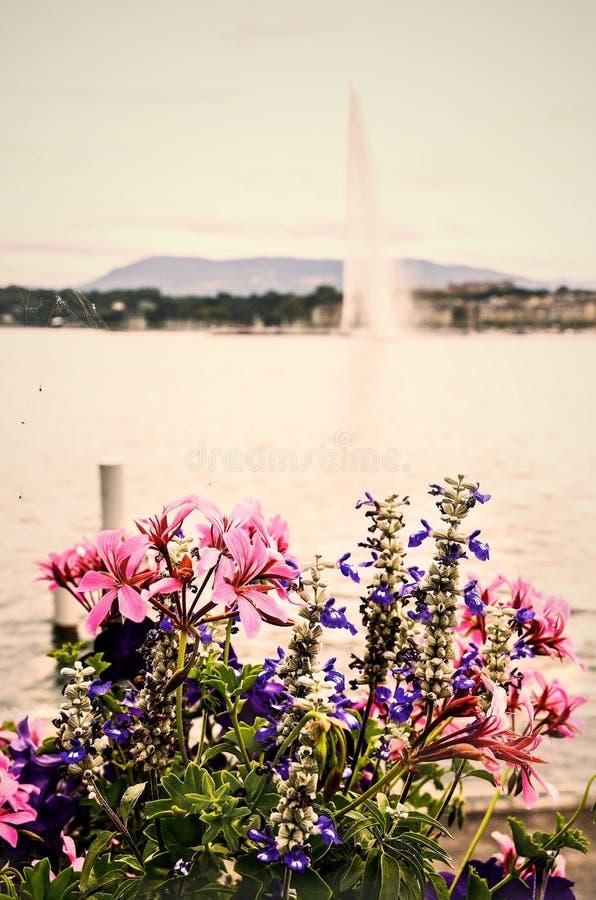 Фонтан на Женеве стоковое фото