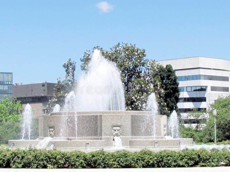 Фонтан 2013 парка сената Вашингтона более низкий стоковые изображения