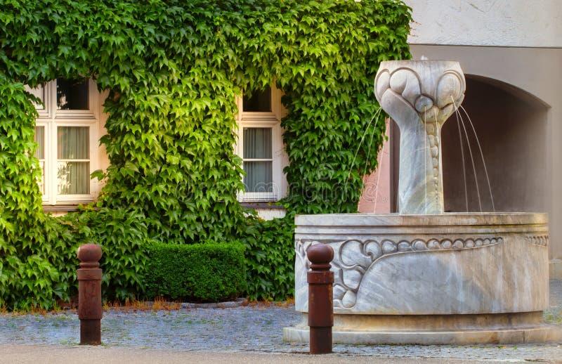 Фонтан перед покрытым плющ домом стоковые изображения rf