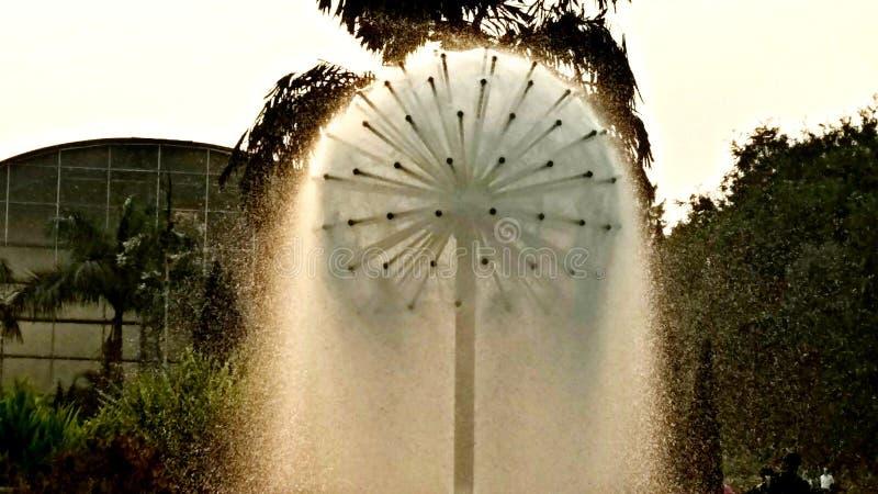 Фонтан сада Raj bhawan стоковые изображения rf