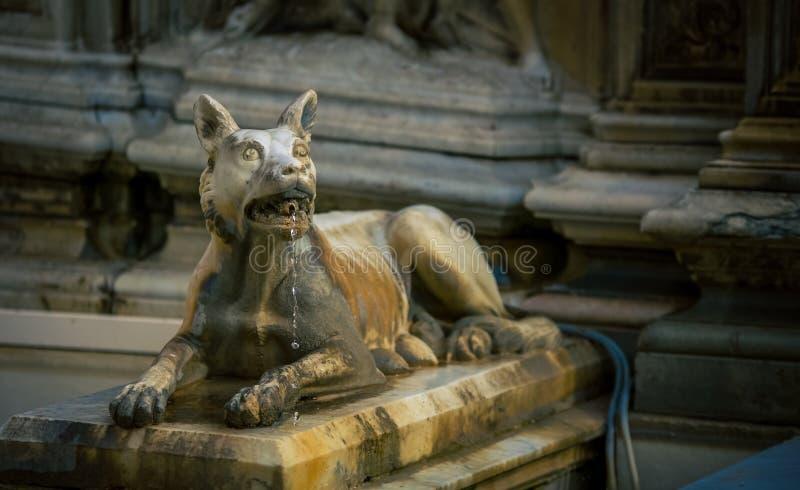 Фонтан Сиена собаки стоковые изображения