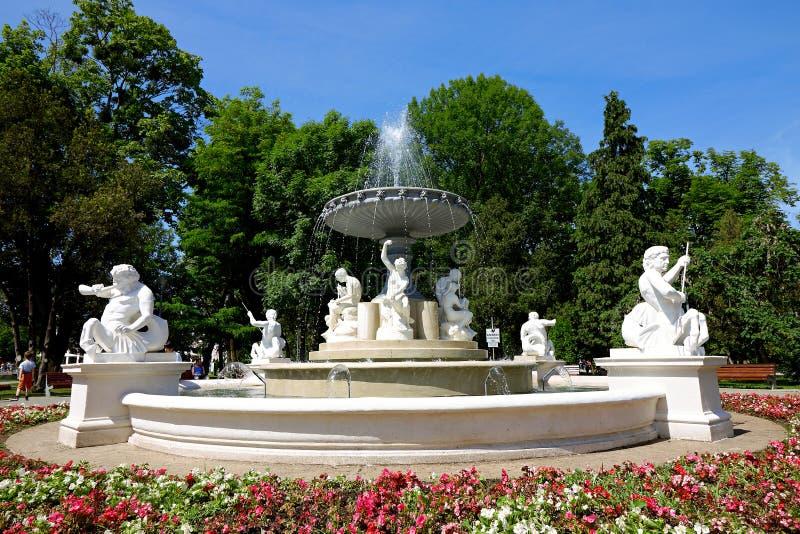 Фонтан Central Park, cluj-Napoca стоковое изображение rf