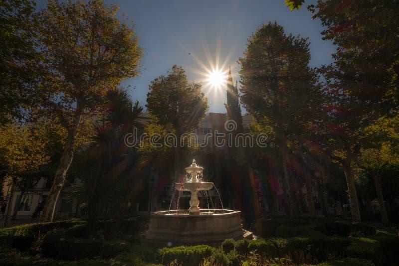 Фонтан Sunstar стоковые изображения rf