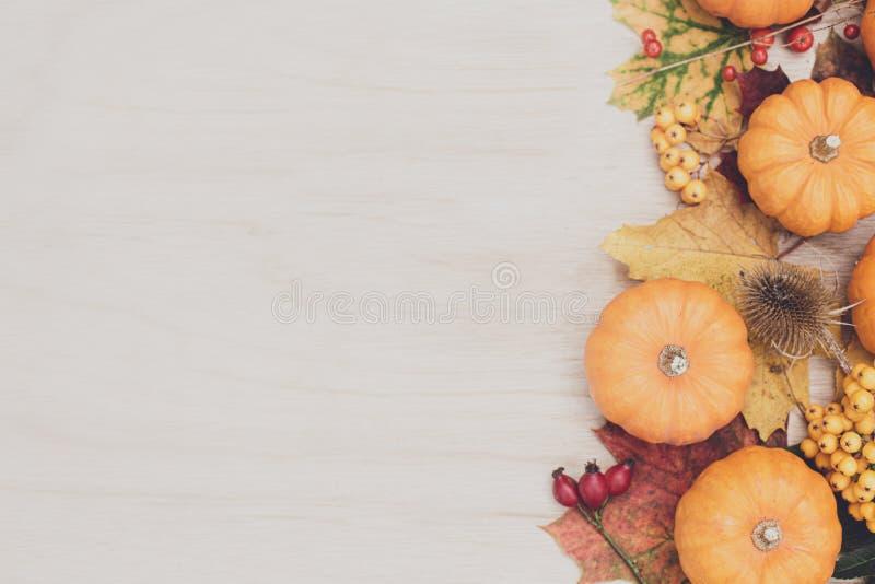 Фон дня благодарения осени Листья, тыквы на деревянном фоне стоковое изображение rf