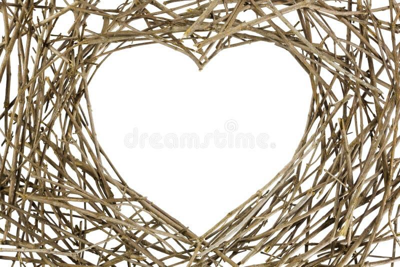 форма влюбленности ветвей стоковое изображение rf