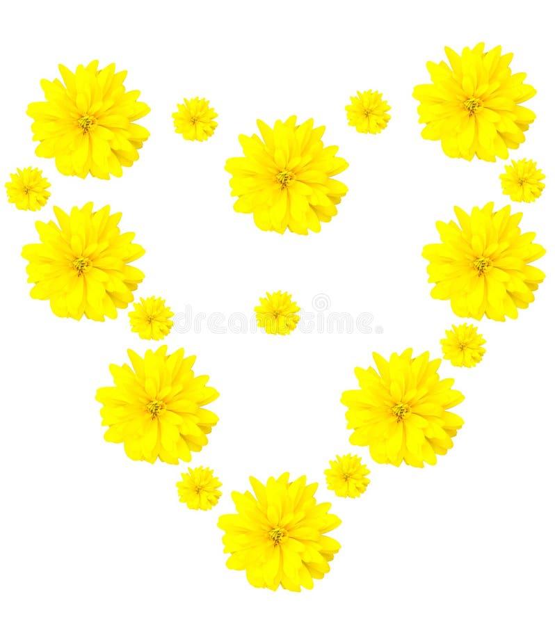 форма влюбленности сердца цветка конструкции стоковое фото