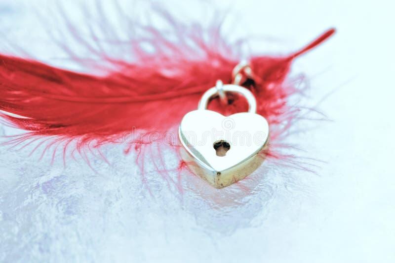 Форма сердца на красном пере стоковое изображение rf