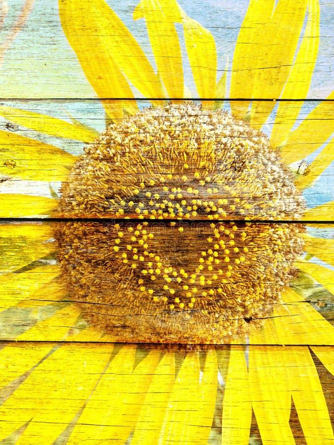 Форма сердца солнцецвета на деревянной текстуре стоковая фотография