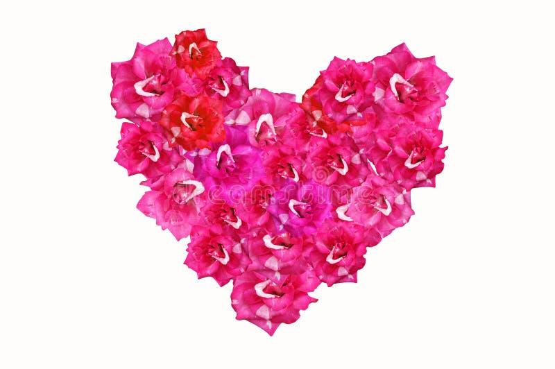 Форма сердца от цветка розового штофа розового стоковые изображения