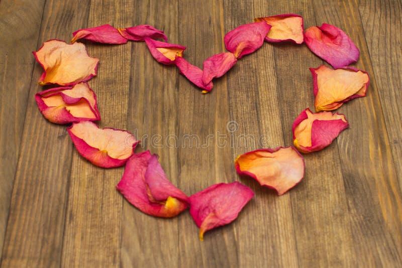 Форма сердца сделанная из сухого лепестка розы стоковые изображения rf