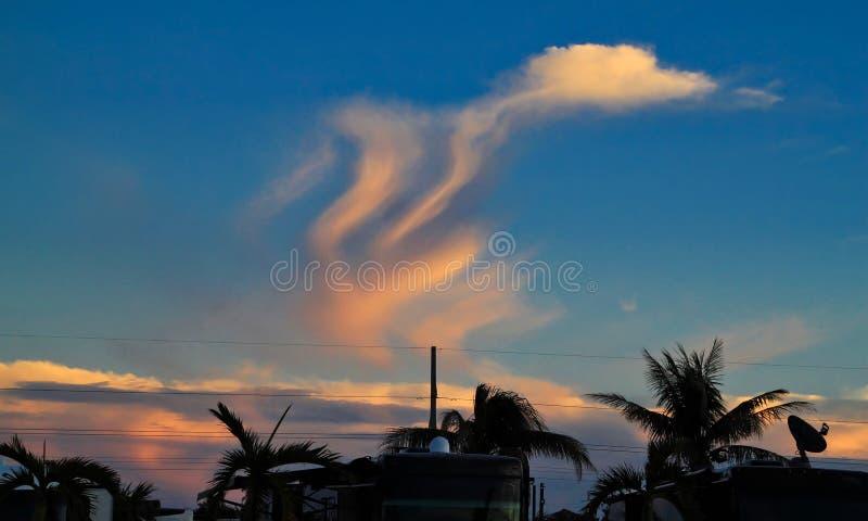 Форма формы облаков смешная любит утка? в небе захода солнца над парком RV в ключе марафона стоковые фото