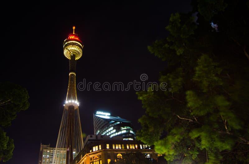 Фотография глаза башни centrepoint Сиднея, взгляд ночи от Гайд-парка стоковые изображения rf