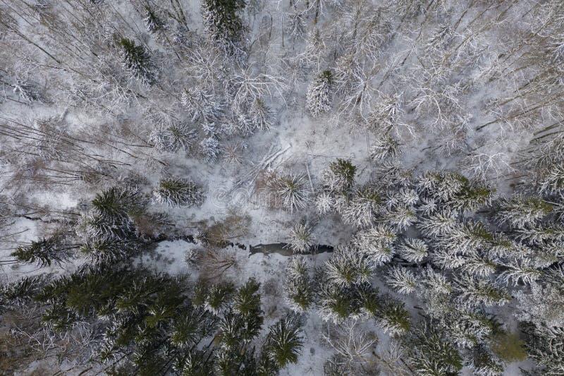 Фотография трутня леса и потока зимы стоковое фото