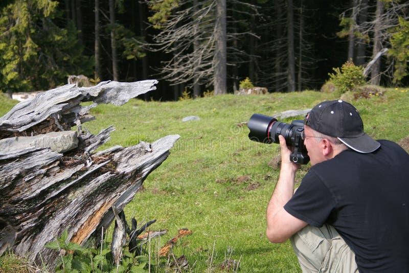 фотограф действия стоковые изображения
