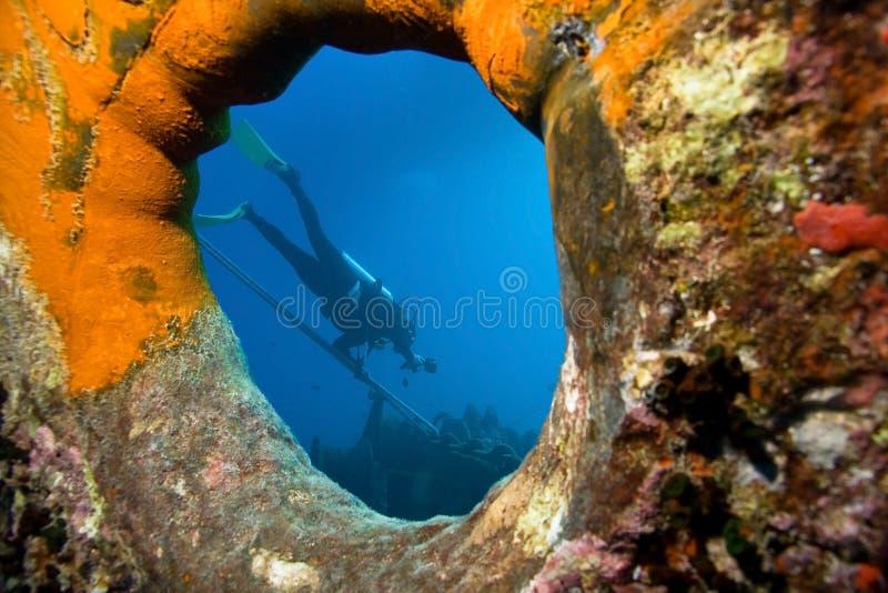 фотограф подводный стоковое изображение