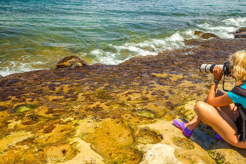 Фотограф природы Гаваи стоковое изображение rf