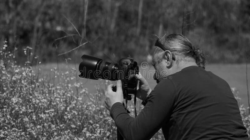 Фотограф природы в поле стоковое фото rf