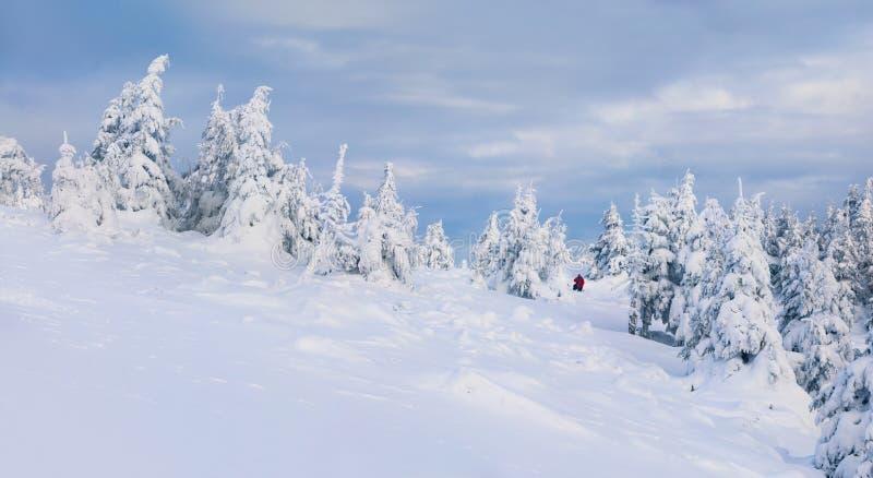 Фотограф фотографирует в горах зимы стоковое изображение