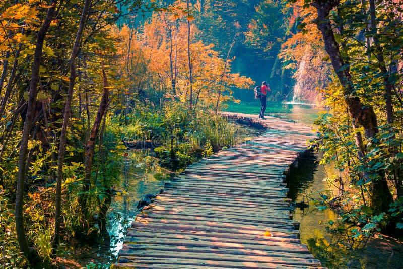 Фотограф фотографирует в национальном парке озер Plitvice стоковые изображения