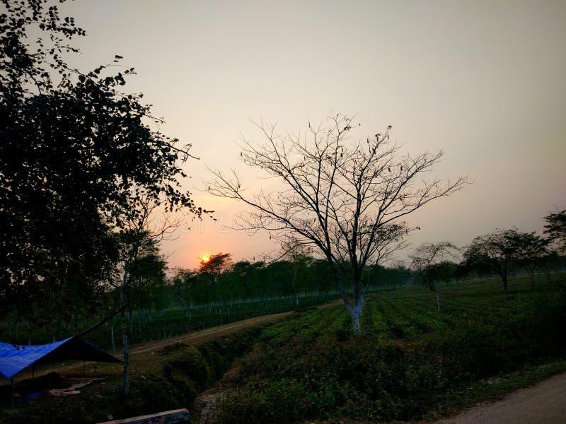 Фото захода солнца стоковые фотографии rf