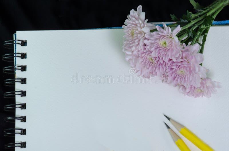 Фото крупного плана розового георгина на белом sketchbook стоковая фотография rf