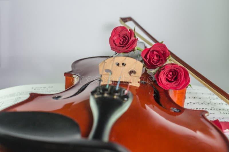 Фото крупного плана скрипки и розы на примечании покрывают стоковое фото