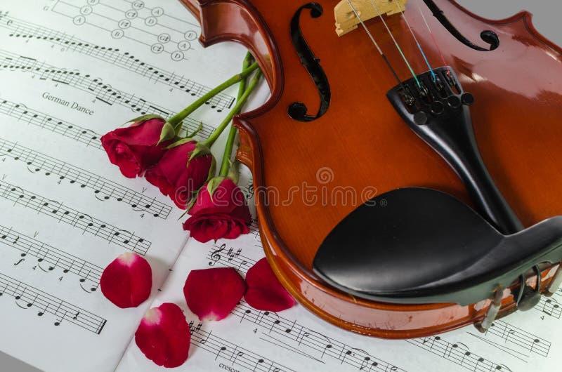 Фото крупного плана скрипки и роз стоковые фото