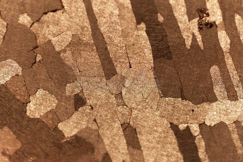 Фото макроса железного метеорита стоковая фотография