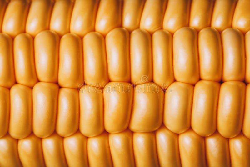 Фото макроса мозоли на ударе Желтая картина природы семян стоковые фотографии rf