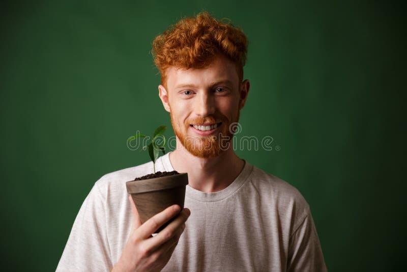 Фото молодого человека красивого redhead бородатого, держа в горшке план стоковые фотографии rf