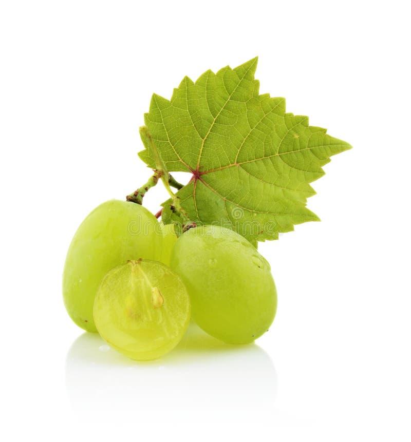 Фото некоторых виноградин при листья изолированные на белизне стоковое фото