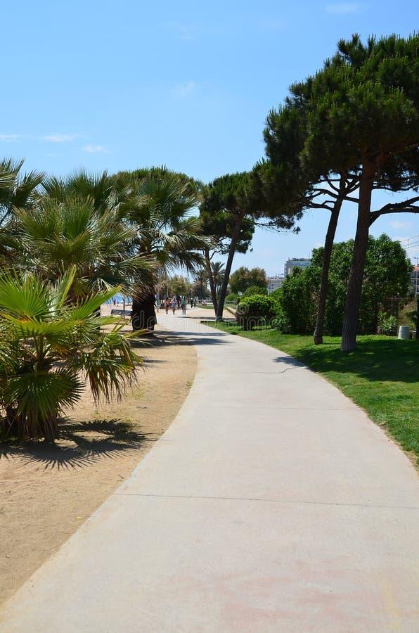 Фото пути прогулки к пляжу стоковые изображения rf