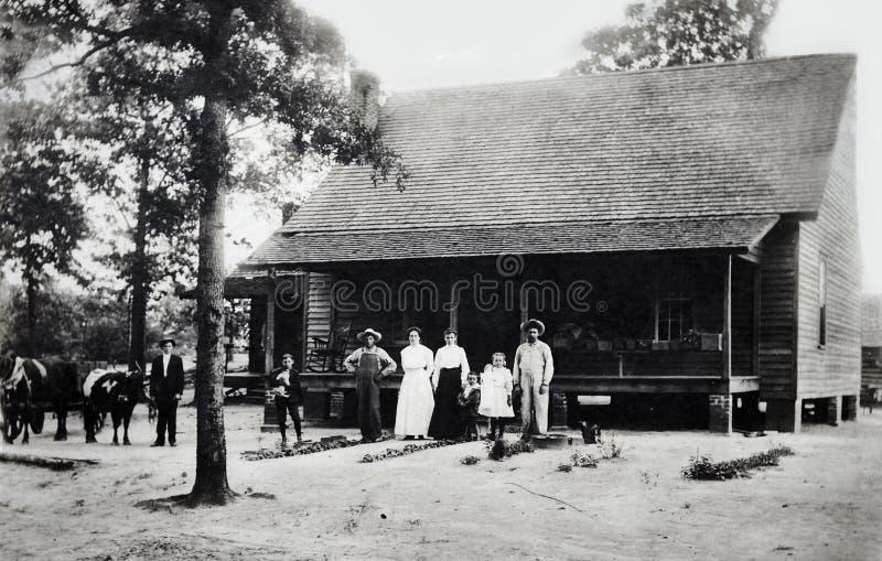 Фото сбора винограда семьи стоковые фото