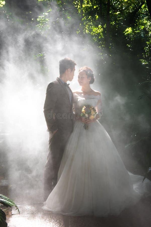 Фото свадьбы в тропическом лесе стоковое изображение rf