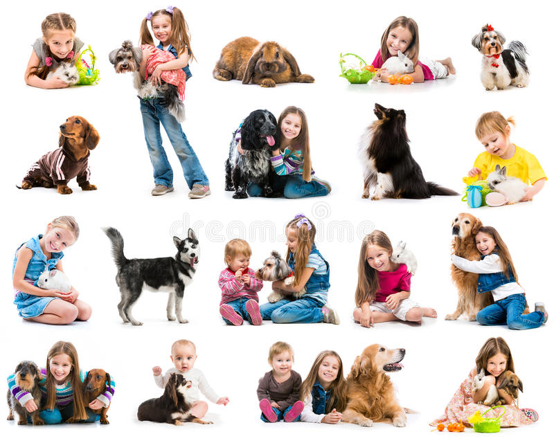 Фото собрания маленьких ребеят с собаками и стоковые изображения rf