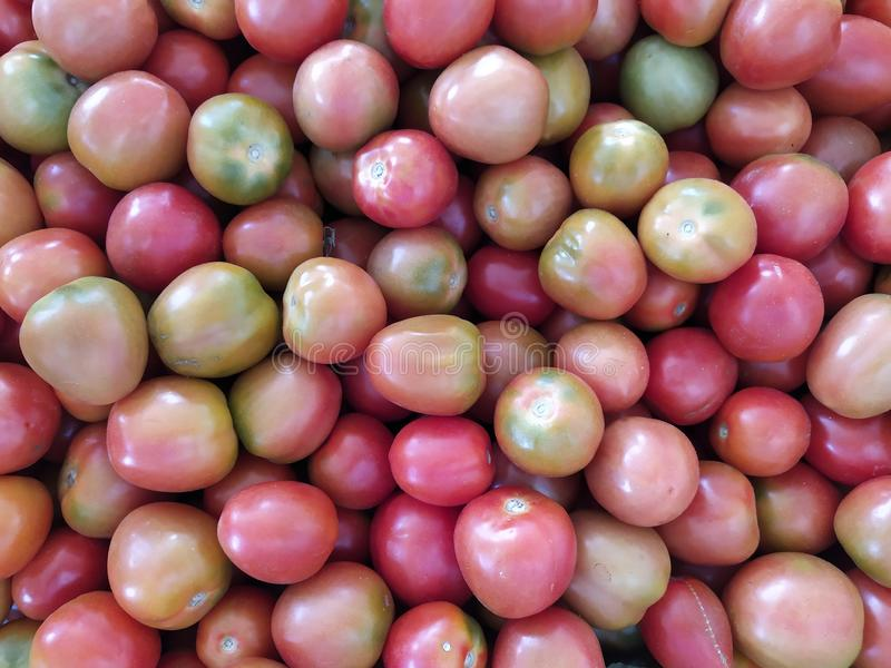 Фото стека помидоров стоковое фото