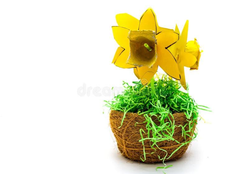 Фото студии домодельного Daffodil против чистой белой предпосылки стоковое фото