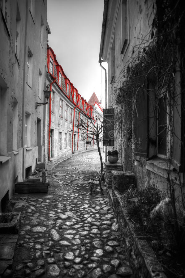 Фото Таллина стоковые изображения rf