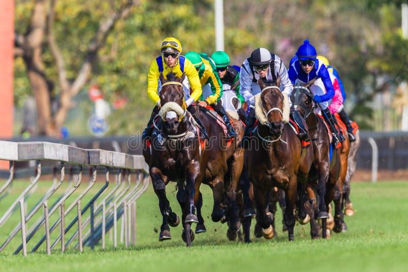 Фото фронта действия лошадиных скачек стоковые фото