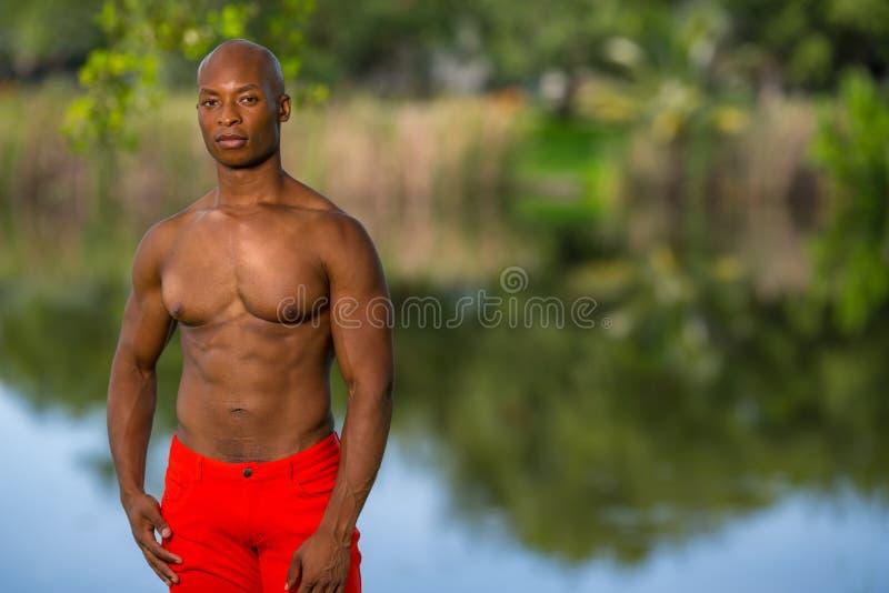 Фото цвета красивый представлять молодого человека без рубашки в парке стоковое изображение rf