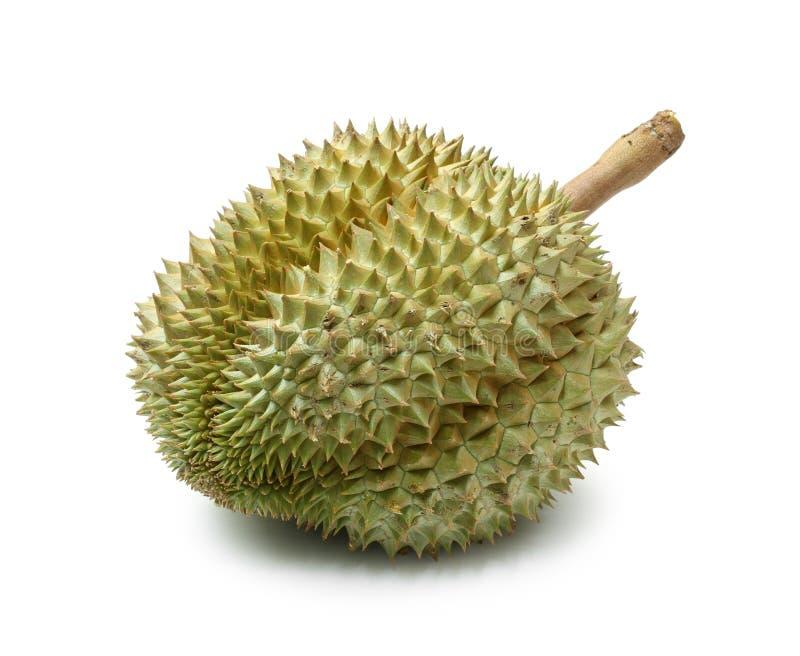 фото durian изолированное плодоовощ тропическое стоковые фотографии rf