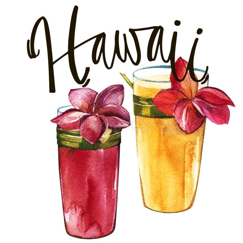 Фраза литерности - Гаваи Состав с коктеилями акварели нарисованными рукой с Plumeria Предпосылка для упаковки еды иллюстрация штока
