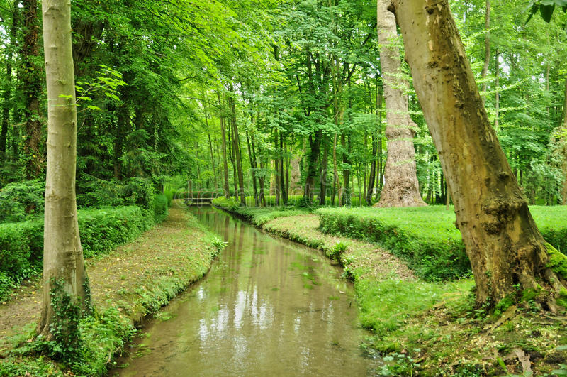 Франция, сад замка канона в Normandie стоковые изображения rf