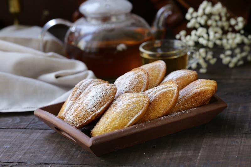 Французские печенья madeleine стоковое фото rf