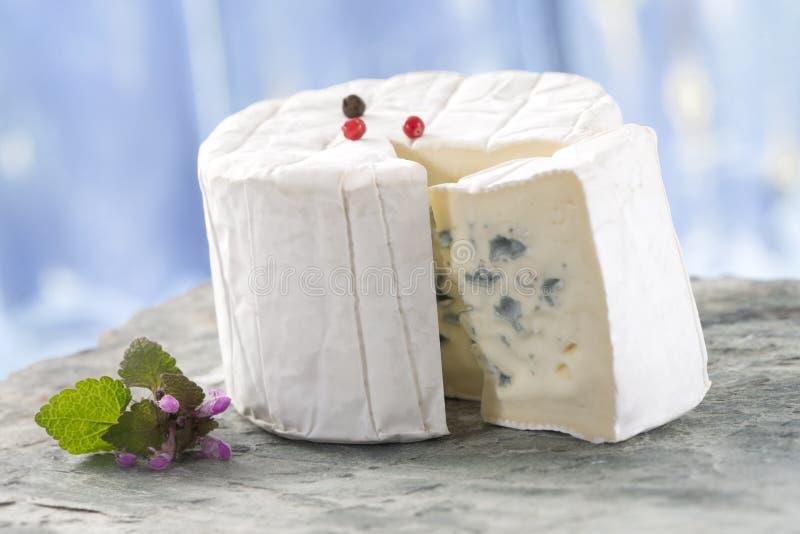 Французский блю голубого сыра бресский стоковое изображение rf