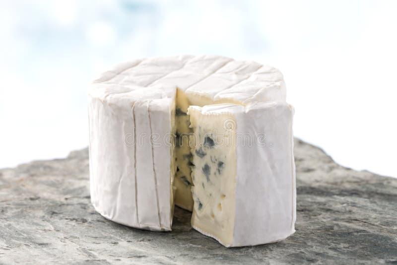 Французский блю голубого сыра бресский стоковые фото