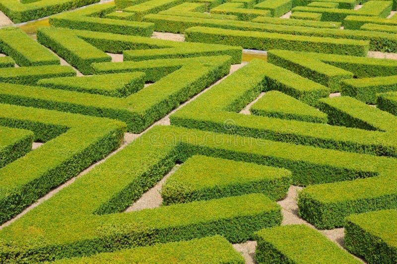Французский официально сад в Domaine de Villarceaux стоковые фотографии rf