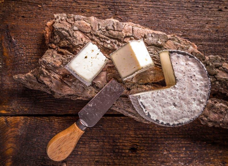Французский сыр камамбера стоковые фото
