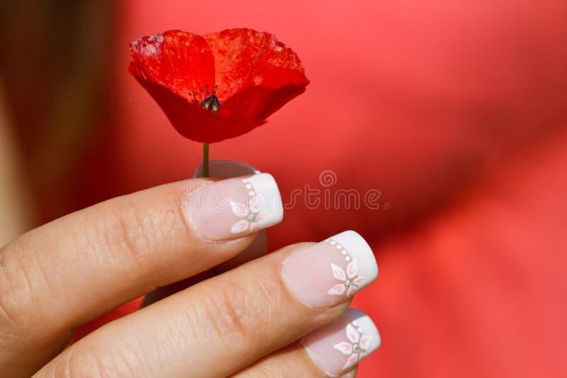 Французский manicure стоковая фотография rf