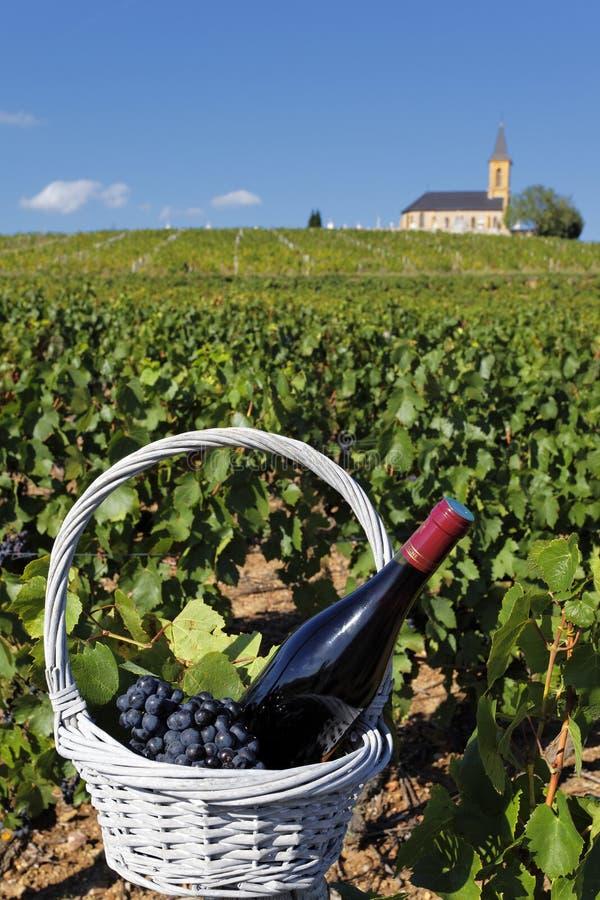 французское вино стоковое изображение